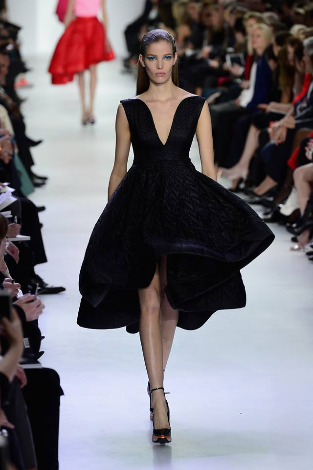 701fb7bcb2d PARIS FASHION WEEK  CHRISTIAN DIOR FALL  WINTER 2014 COLLECTION ...